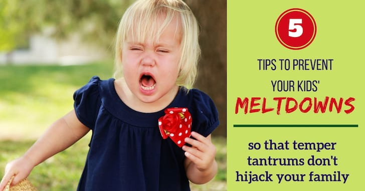 Reader Question: How Do I Stop My Child's Meltdowns