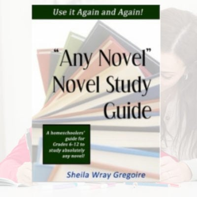 "Any Novel novel Study Guide Product 400x400 - ""Any Novel"" Novel Study Guide"