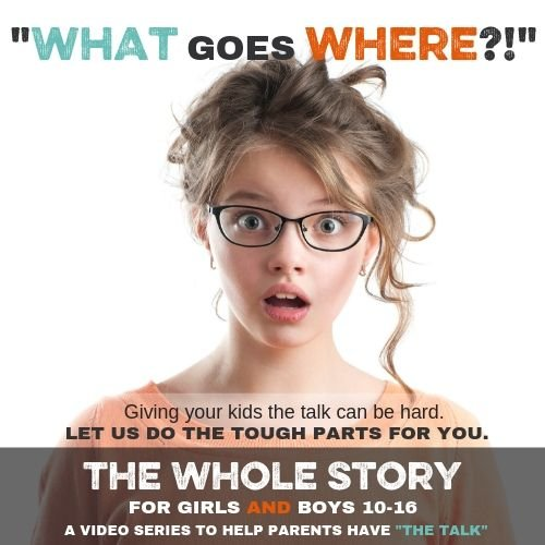 TWS Store Graphic - The Whole Story Group Package--10 Copies